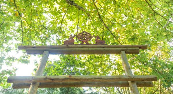 buddha boma c flores 4902