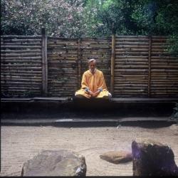 Buddhist statues, shrines & icons