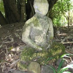Moss Buddha_1