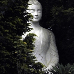 Buddhist statues shrines and icons