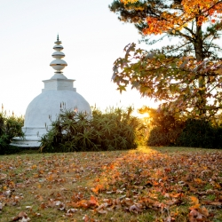 Stupa in Autumn_1