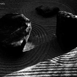 Zen Dust_1