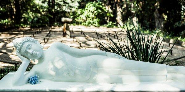reclining buddha sean laurenz 3632