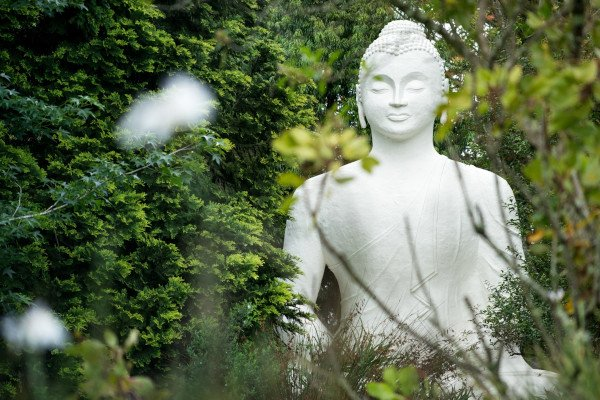 buddha 6292
