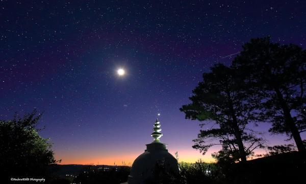 stupa dawn andrew brown