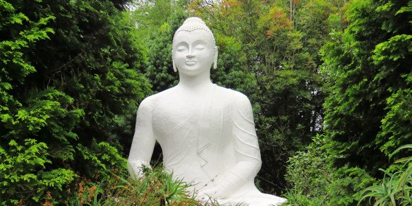 buddha l eriksson