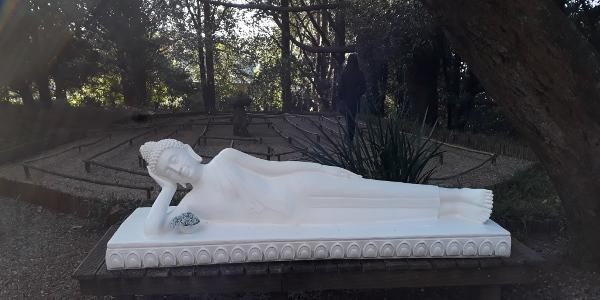 BRCIxopo reclining buddha photobyBryanMaggs 4208