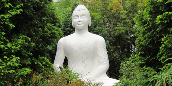 brc-buddha