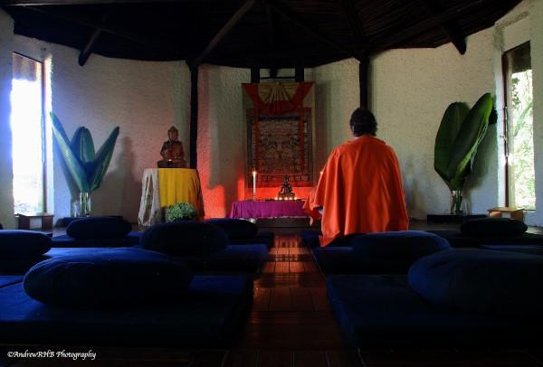 meditation hall a brown
