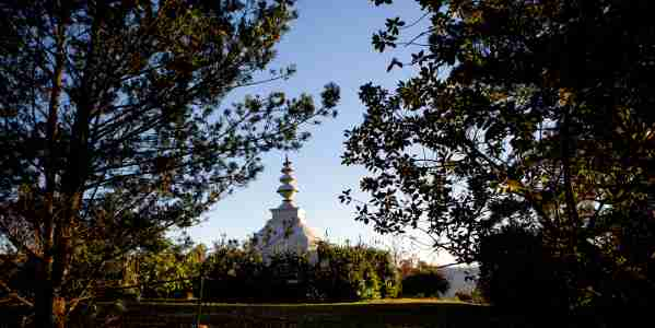 stupa through the trees l de venter9B1A6416