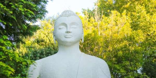 buddha rupa brcixopo c flores 4983