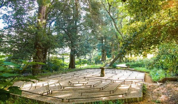 labyrinth c flores4826