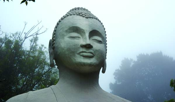 brc buddha in the mist a shaw