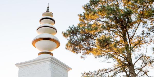 lisa de venter brc stupa