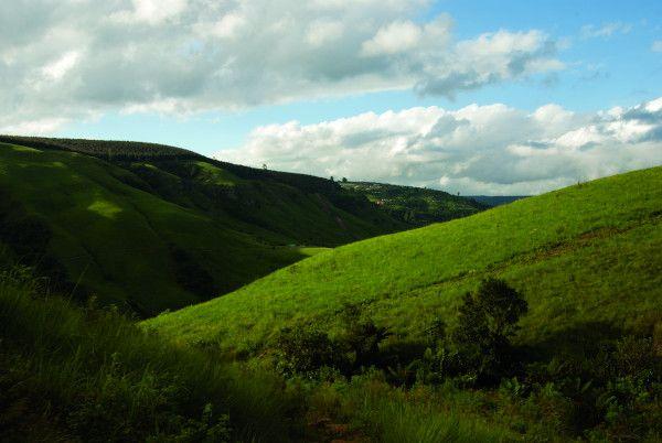 a shaw brc hills