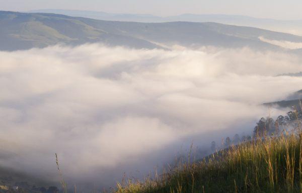 cloud counterpane nhlakanipho nkomo