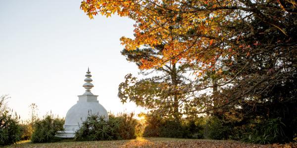 autumn stupa brcixopo lisadeventer