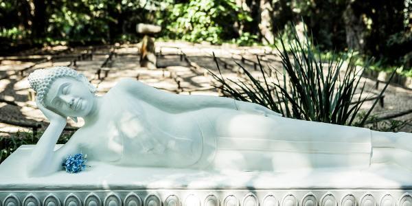 reclining buddha brc ixopo sean laurenz3632