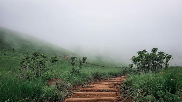 valley in mist gavin naicker