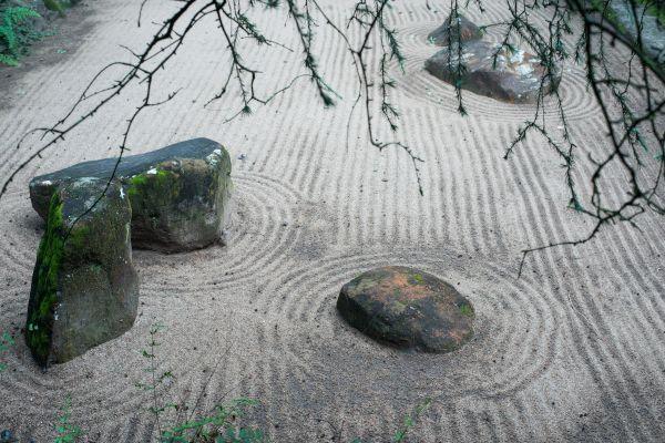 zen garden a buckland2020
