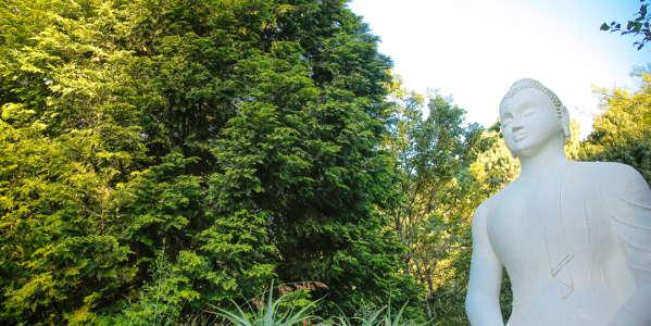 brc buddharupa c flores4970