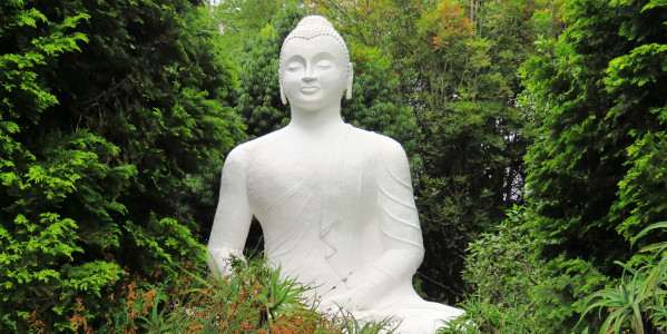 brc buddharupa l eriksonn