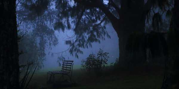 bench in the mist andrew brown