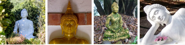 may2021 buddhas