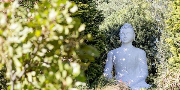 brcixopo buddha ldeventer 6556