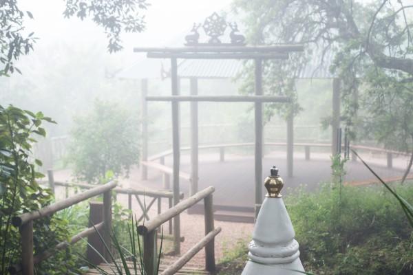 buddha boma a buckland20205114