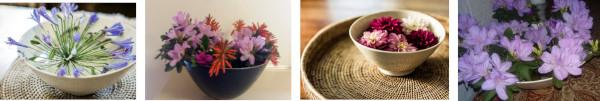 spring in bowl