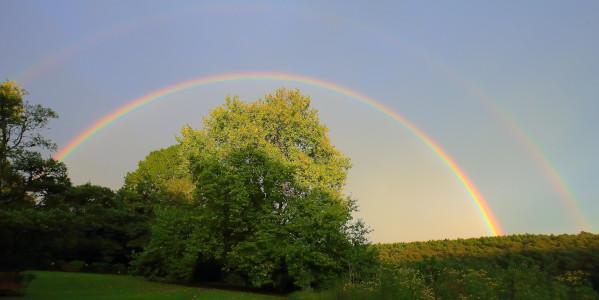 brc andrew brown rainbow2