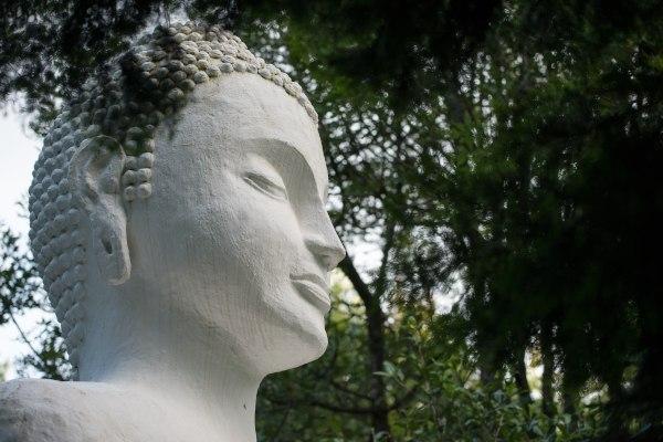 buddha rupa a buckland5397