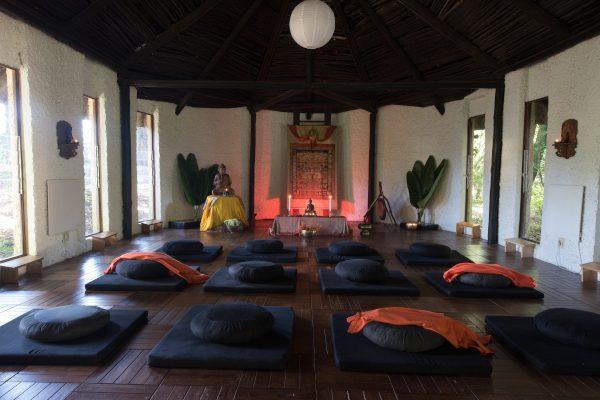 meditation hallnhlakanipho nomo0451