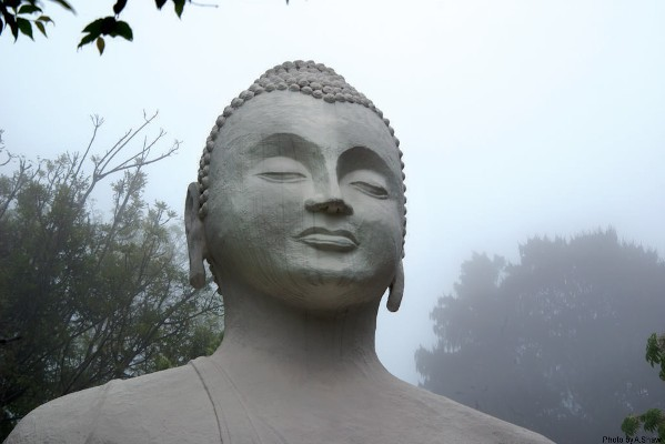 26 06 shaw brc buddha mist 0011