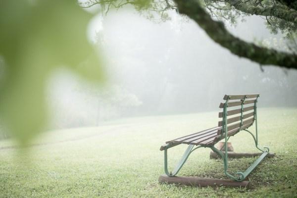 brc bench a buckland 5145