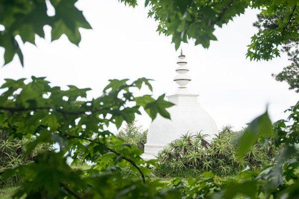stupa a buckland6235
