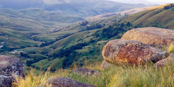 nalanda.rocks