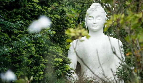 buddharupa a buckland6292