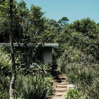 cottage-path_SL_3249