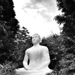 Buddhist Statues, shrines & icons_1