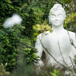 Buddhist statues shrines  icons_11