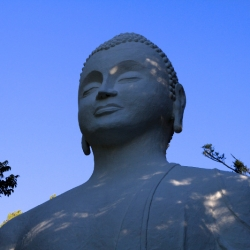 Buddhist statues shrines  icons_4