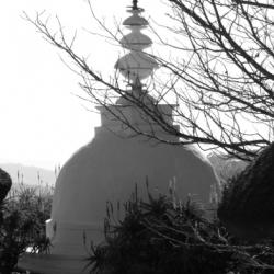 Buddhist statues shrines  icons_5