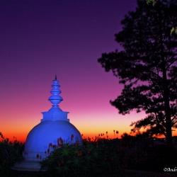 Morning Stupa_1