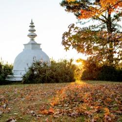 Stupa in Autumn_1